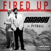 Shaggy ft. Pitbull - Fired Up