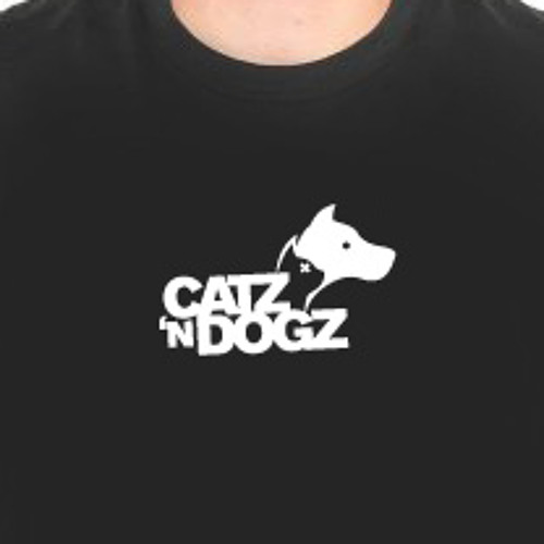 Kings Of Leon - The  Immortals (Catz 'n Dogz remix) [Snippet]