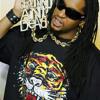 Lil Jon Ft. Ludacris - Bass Terror