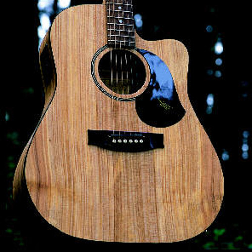 Australian Made Guitar Group (Homegrown Originals)