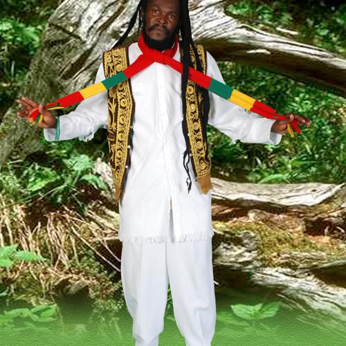 14Bob Marley Story remix