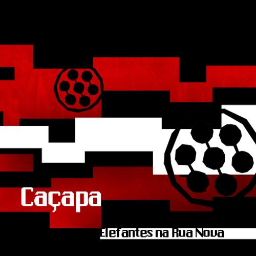 ELEFANTES NA RUA NOVA - Caçapa (2011)