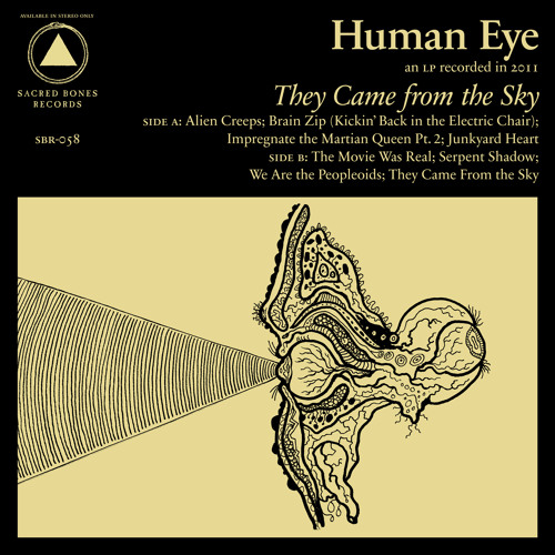 Human Eye - Junkyard Heart