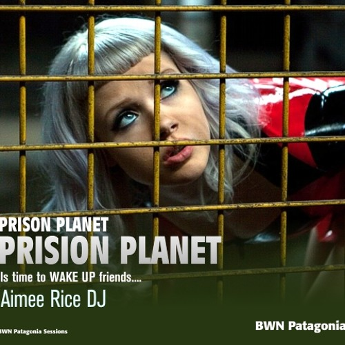 Prison Planet by Aimee Rice