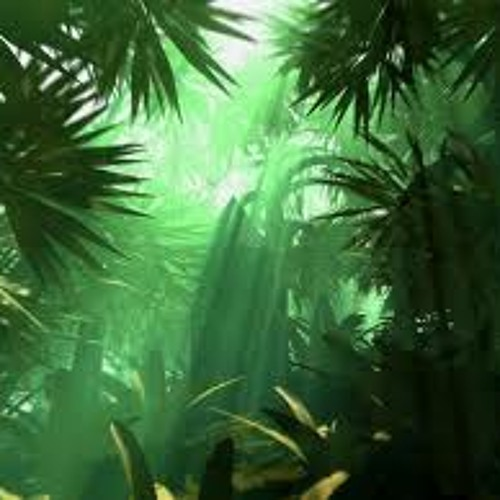 Future Jungle / Nu Jungle / Jungle Breaks / 140 Jungle