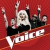 Crazy - The Voice's Coaches
