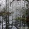 Blanx - Mech Swamp Boogie (320 MP3 DOWNLOAD)