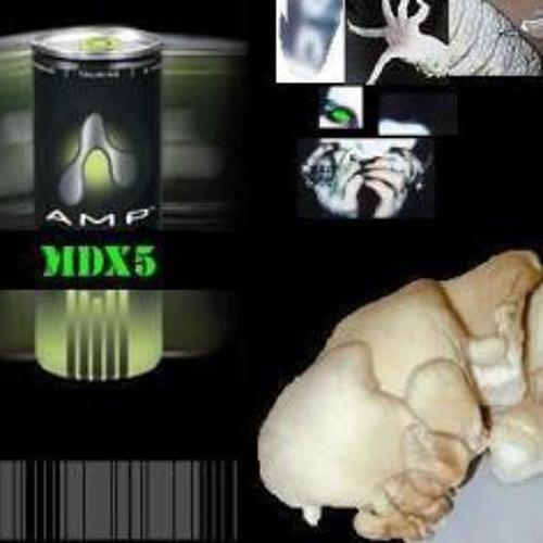 MDX5 - Fag Massacre