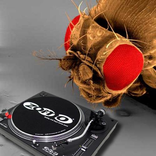 House Music - Eddie Amador (B.E. System Remix)