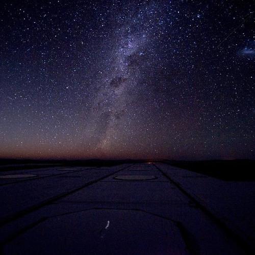 Night Flight (Free 320)