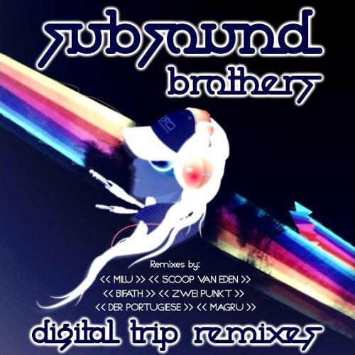 Subsound Brothers - Digital Trip (zwei.punkt remix | Synonym Rec.)