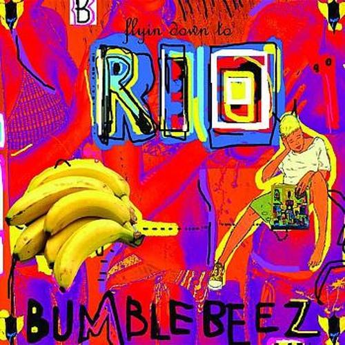 RIO (Crookers Bang Mix)
