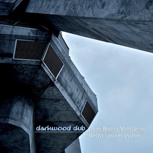 Darkwood dub - Nesto sasvim izvesno - PureSoul RMX