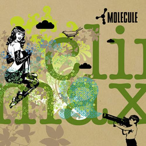 Molecule Feat. Promoe - Faluja