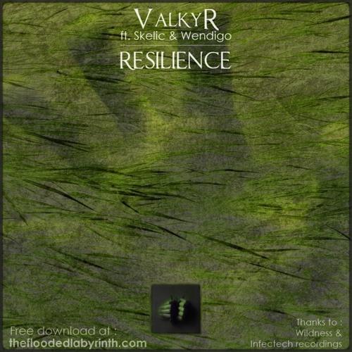 ValkyR - Resilience LP