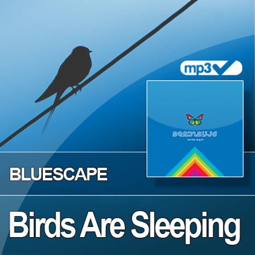 Birds Are Sleeping, by Aeryal