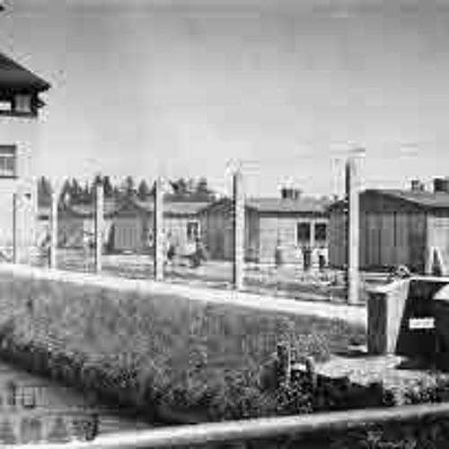Night In Dachau (Skopje)