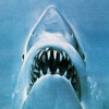 JAWS THEME (Live at Boston Symphony Hall)