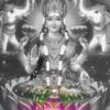 Passaro de fogo - versão indiana - Dj Halexandre Sylvestres mashup