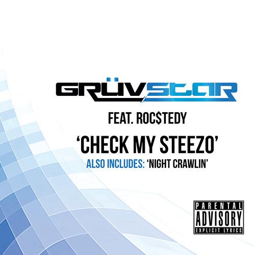 Check My Steezo (Original Mix)