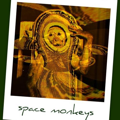 Nilakshy - Space Monkeys