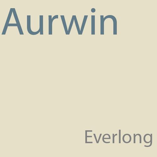 Foo Fighters - Everlong (Aurwin Remix)