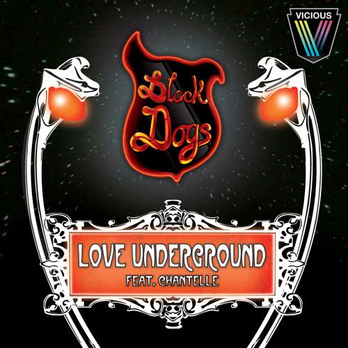 BLACK DOGS LOVE UNDERGROUND (Hot Toddy Remix)