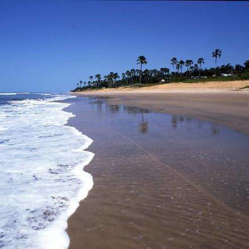 Liime - Gambia