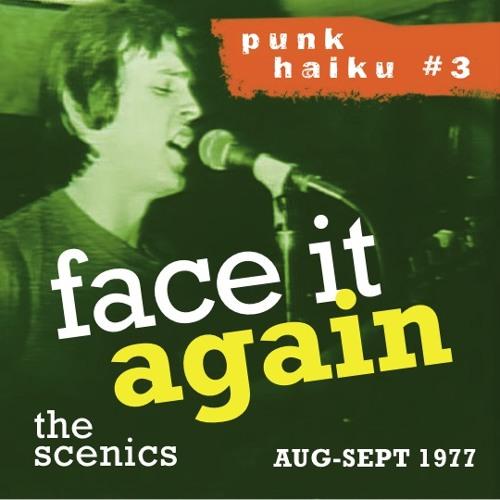 FACE IT AGAIN (Punk Haiku3) Live 1977