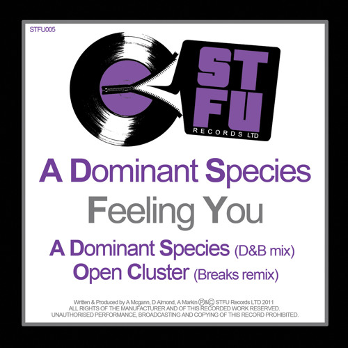 A Dominant Species-Feeling you-Original DnB mix-OUT 1st AUGUST BEATPORT-15TH OTHERS