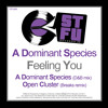 A Dominant Species-Feeling You-Open Cluster breaks remix)-OUT NOW