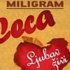 Ceca  -  Steta za mene   (Deejay Rosske) free download now