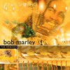 Bob Marley - Sun is Shining (Messy Boys Mix) Palm Pictures
