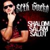 Seth Gueko - Shalom Salam Salut (Yuri The Mind's Revenge)