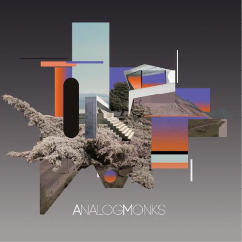ANALOGMONKS - ECHOES ep 2011