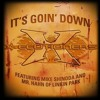 Linkin Park - It´s Goin Down