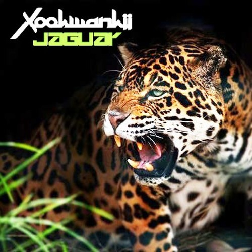 Xookwankii - Jaguar (Xookwankii 11 years mix)