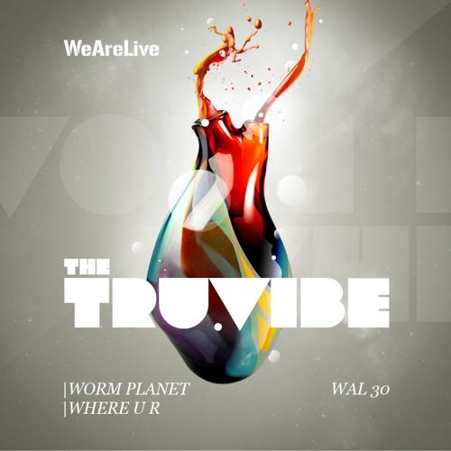 The Truvibe - Where U R