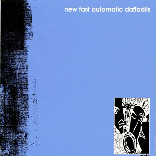 New Fast Automatic Daffodils - Lions