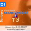 Secret Voices 13