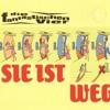 Die Fantastischen Vier - Sie ist weg (matzes own voices rework 2011)
