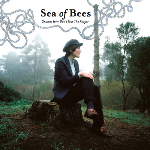 Sea Of Bees - Don't Fear The Reaper