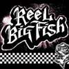 REEL BIG FISH - MONKEY MAN + VIDEO