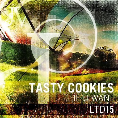Tasty Cookies - If U Want (NDKj remix) SC EDIT