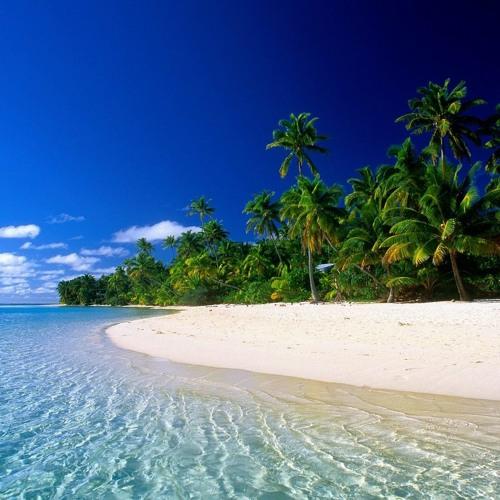 Huck - Tropical Mood