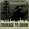 Feeling Alright - Rebelution