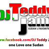 Horace Brown Feat. Jay Z  : Things We do for Love  ( Dj teddy jam remix )
