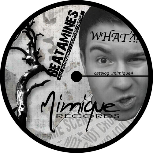 Mimique 4 / BEATAMINES - WHAT!?! EP (incl. Andy Kohlmann and Steve Lischinsky Remix)