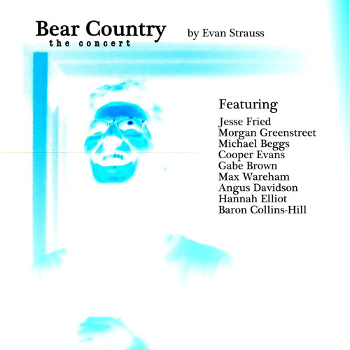 BEAR COUNTRY: The Sampler (Evan Strauss)
