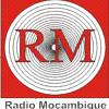 Desafios e Estratégias de Implementação da Ortografia Padronizada das Línguas Moçambicanas.